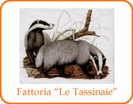 tassinaie